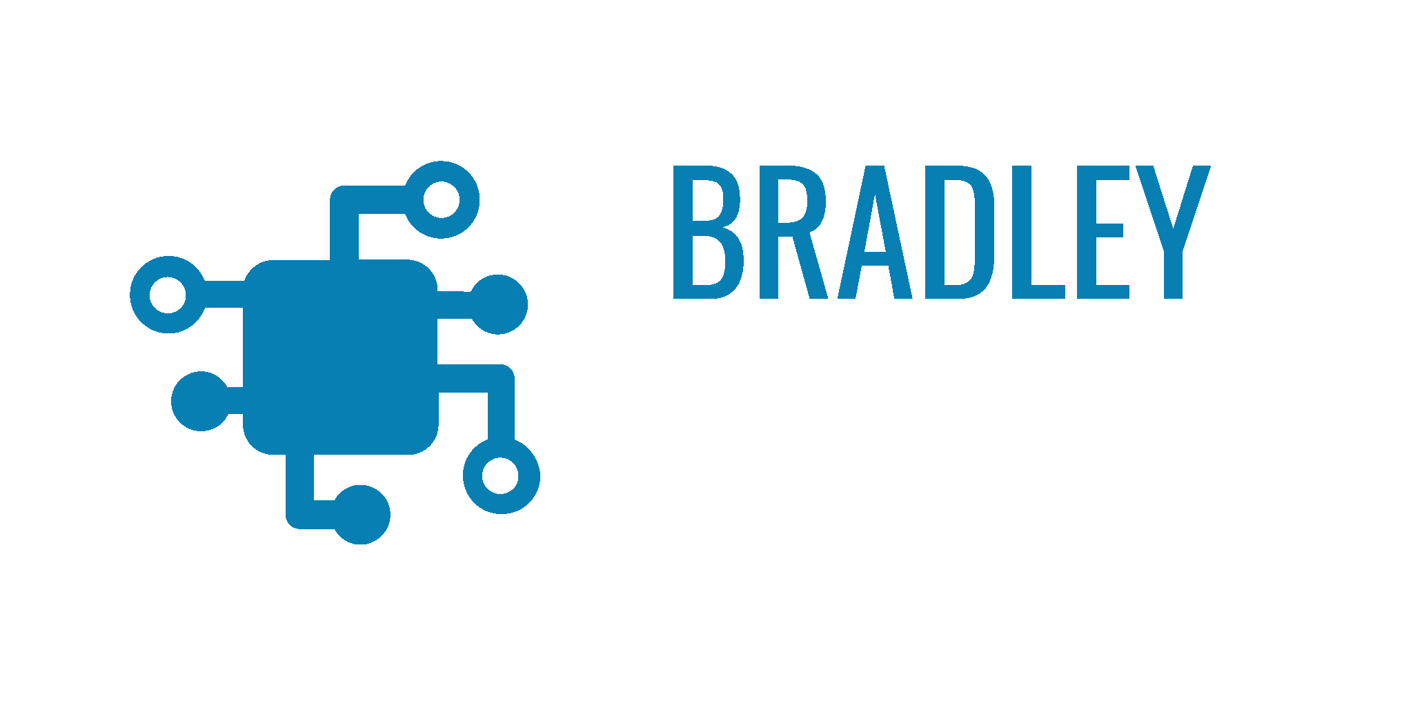Bradley IT Services